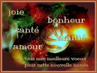 Voeux 2018 présidente du club optimiste Vaudreuil-Dorion Vanessa Thauvette